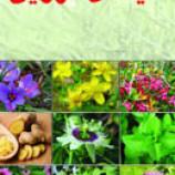 سوالات فنی و حرفه ای پرورش دهنده گیاهان دارویی (ادواری)