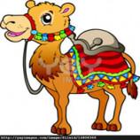 سوالات فنی و حرفه ای پرورش دهنده شتر (ادواری)
