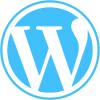 سوالات طراحی و توسعه سیستم های مدیریت محتوا با وردپرس